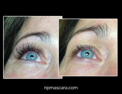 long lasting eyelash extensions regina carol daniels before and after